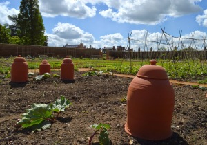 Hampton Court Kitchen garden2 low Sandra Lawrence